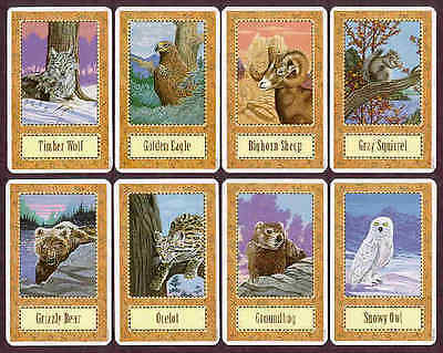 Wolf Song Cards  - BNIB manufacture sealed LAST ONE
