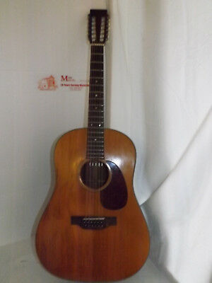 1970 Martin D12-20 ,12 String guitar with new hardshell case