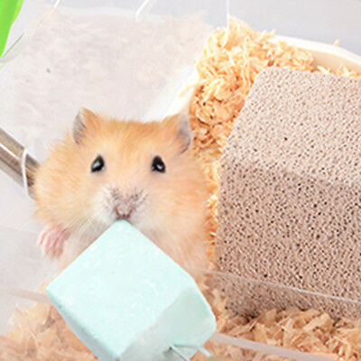1X Hamster Mineral Teeth Grinding Stone Chew Toy Aninal Pet Chinchilla 2.5*2.5cm