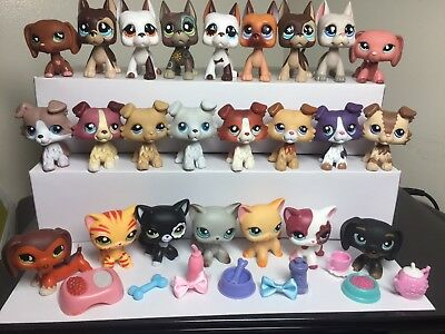 Littlest Pet Shop LPS Great Dane #577 Collie #363 Dog #Cat #391 3 Random +3-Acc.