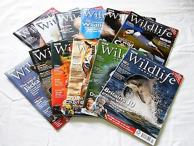 BBC Wildlife magazines from June 1999 to December 2013