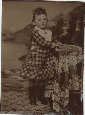 Tintype Great Pose, Little Girl,hand Colored Cheeks,curly Bangs,checker Dress