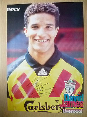 Original Signed Press Cutting- DAVID JAMES at Liverpool FC (apx. A4 )