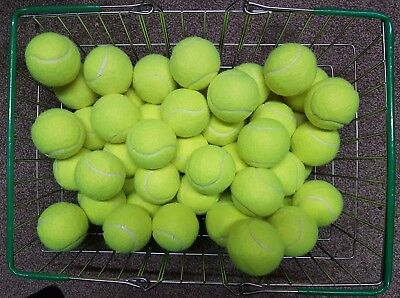 60 Used Tennis Balls-Low Pressure-Childrens Ball Games / Dog Toy-Machine Washed,