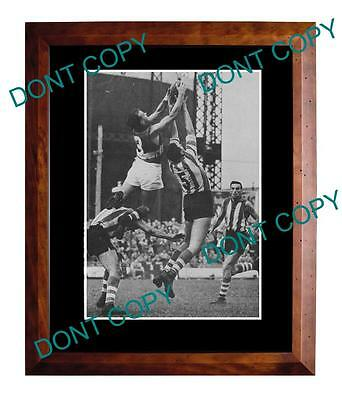 Ted Whitten Footscray Fc Great 1961 A3 Specky Print