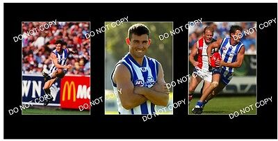 ANTHONY STEVENS NORTH MELBOURNE GREAT 38x6 LARGE PHOTOS