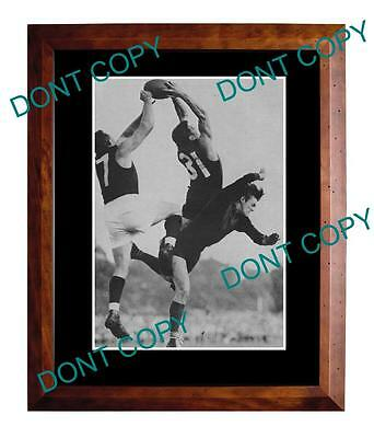 Ron Barassi 1957 Melbourne Demons Large A3 Specky Print