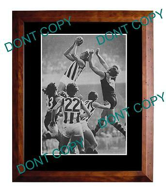 Billy Picken Collingwood Fc Great Large A3 Specky Print