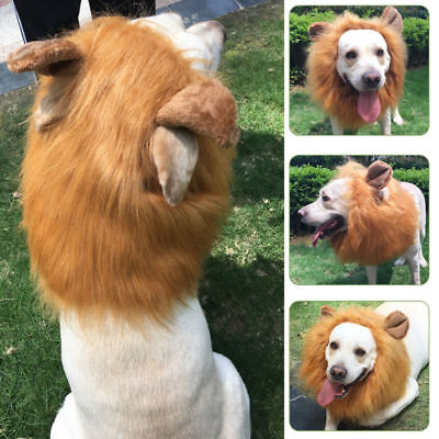Pet Hat Lion Mane Wig For God Halloween Fancy Dress Up With Ears Festival