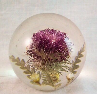 Art Glass Thistle Enbedments Hippocampus Paperweight MI England Paper Label