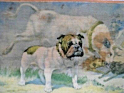 Bulldog Collectible: Vintage Picture Of A Bulldog On A Wooden Plaque