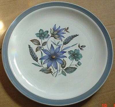 Alfred Meakin Glo White Ironstone Salad Breakfast Plate Blue Flowers