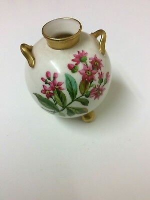 Very pretty Royal worcester vase