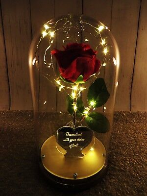 Beauty Amp The Beast Rose Bell Jar Light 163 28 99 Picclick Uk