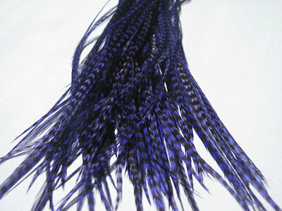 Lot of 100 Metz Rooster Grizzly Saddle Feathers - Dyed Purple - Fly Tying