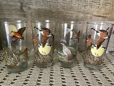 Wildlife Irving Oil Limited Bird Glass Tumblers Set of Four Vintage