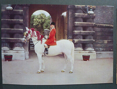 Vintage British Postcard - Royal Outrider