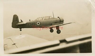 WWII photo- North American Texan T-6 Trainer plane IN FLIGHT w/ Visible PILOTS