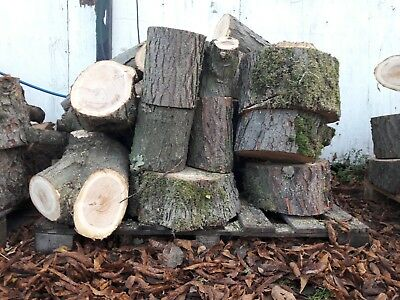 Firewood Logs Collected