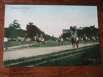 Race Horses, Newmarket Heath, old Valentines Postcard, 1905 G Condition