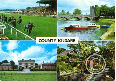 County Kildare, Ireland - multiview postcard - horse racing etc