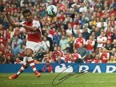 Alexis Sanchez Arsenal Original Hand Signed Photo 12x8 With COA