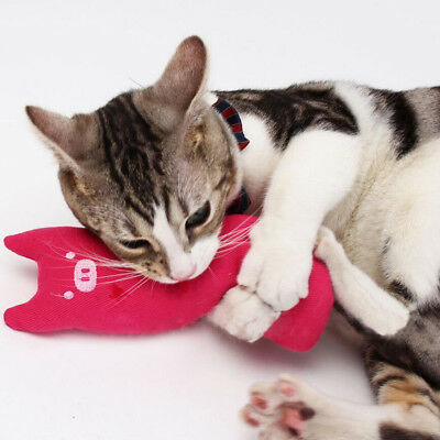 Hot Fancy Cat Interactive Pillow Toy Teeth Grinding Claws As Pets Funny Toys