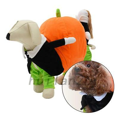 1x Pet Dog Halloween Costume Clothes Puppy Apparel Coat Jackets Carrying Pumpkin