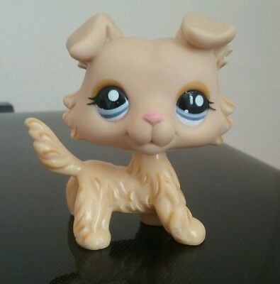 Lps Chien Dog Colley # 1194 Rare