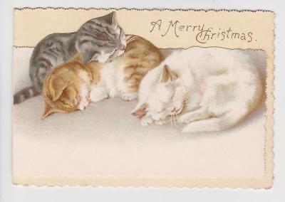 Victorian Christmas Card , Cats  By Ernest Nister ,  1895