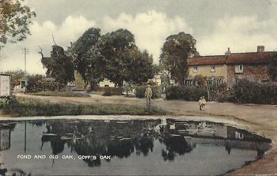 Pond And Old Oak. Goff's Oak