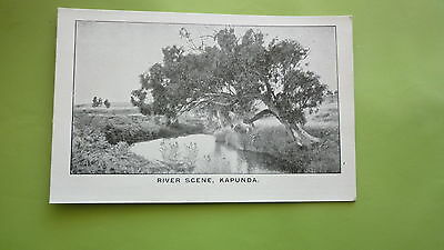 EARLY 1900s SOUTH AUSTRALIAN POSTCARD, KAPUNDA RIVER SCENE