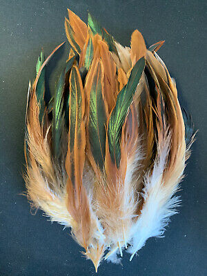 BULK 50 Natural Tan Bronze Rooster Coque Feathers 12-20cm DIY Craft Millinery