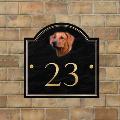 Rhodesian Ridgeback House name sign, House Number, Personalised Dog House Sign