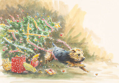 Yorkshire Terrier Dog, Christmas cards pack of 10 by Paul Doyle. C552X