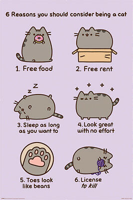 Pusheen (Reasons to be a Cat) - Maxi Poster 61cm x 91.5cm PP34253 - 387