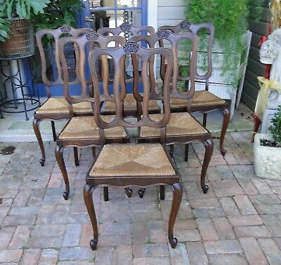 Antique French Dining Chairs Shell Carving Rush Seats Cabriole legs  Loop Back