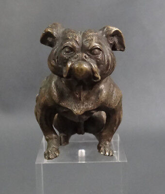 1890 Austrian Vienna Bronze Sitting Mighty English Bulldog Bergman Figurine 2928