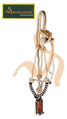 Rumani Quality Rope Halters With Braided Crown With Contrasting Leads