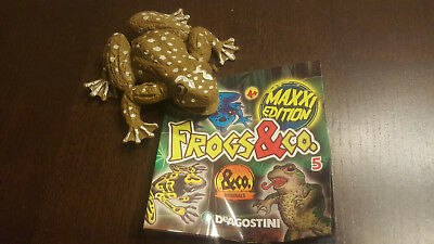 DeAgostini Frogs & Co.Maxxi Edition Nr 5 - Bunter Katzenaugenfrosch
