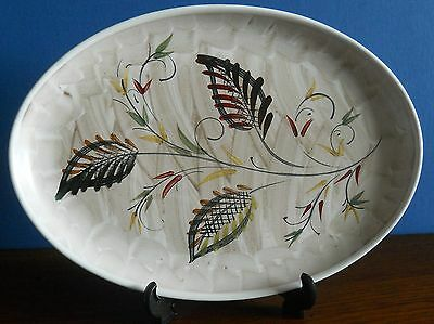 Vintage hand painted Oval Denby stoneware dish