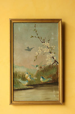 Antique Vintage  Bird painting.