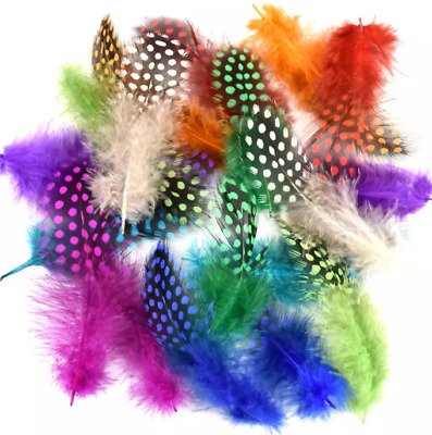 50 Random mixed colour 5-11cm Dyed Guinea Fowl Feathers DIY Art Craft Millinery