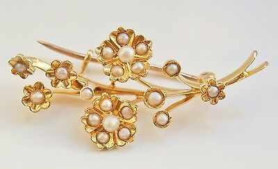 Fine Quality Antique Victorian 15ct Gold Seed Pearl Floral Spray Brooch c1895