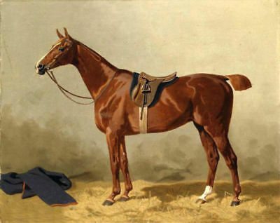 LMOP331 100% hand painted racing horse animal art oil painting on canvas