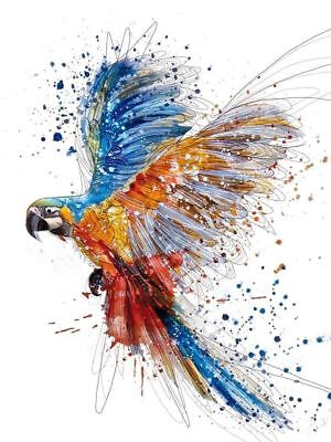 Multi color parrot-watercolour High quality Canvas print Unframed or Framed