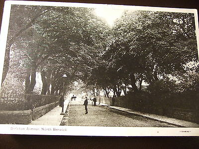DIRLETON AVENUE, NORTH BERWICK  nr Muirfield Golf Club ,East Lothian POSTED 1910