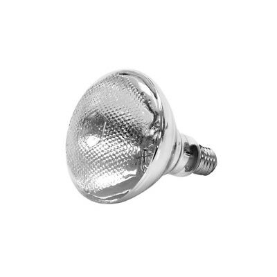 Thunder Group SEJ90001C 250 Watt Uncoated Heat Lamp Replacement Bulb - Clear