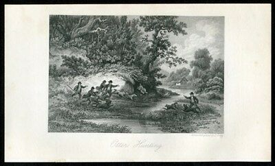 19th century Otter Hunt Victorian England sporting 1893 vintage antique print