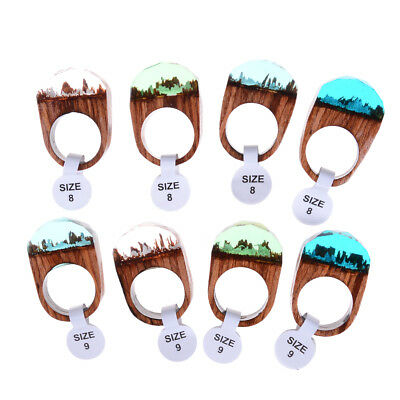 Handmade Wood Resin Ring With Magnificent Tiny Fantasy Secret Landscape Gift GT